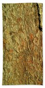 Sunlit Tree Bark Bath Towel