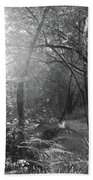 Sunlit Woods, West Dipton Burn Bath Towel