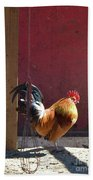 Sunning Rooster Bath Towel