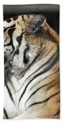 Sunning Tiger Bath Towel
