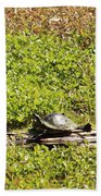 Sunning Turtle In Swamp Bath Towel