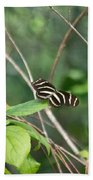 Sunning Zebra Longwing Butterfly Bath Towel