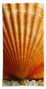 Sunrise On Shell Bath Towel