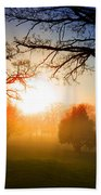 Sunrise Through Trees Bath Towel