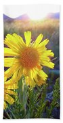 Sunsets And Sunflowers In Buena Vista Bath Sheet