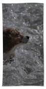 Surfer Dog 1 Bath Towel