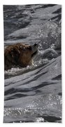 Surfer Dog 2 Bath Towel
