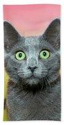 Surprised Cat Bath Towel