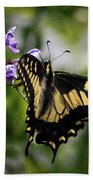 Swallowtail Butterfly 2 Bath Towel