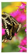 Swallowtail Butterfly Garden Hand Towel by Christina Rollo