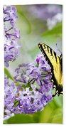 Swallowtail Butterfly On Lilacs Bath Towel