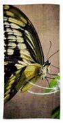 Swallowtail Bath Towel