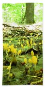 Swamp Becon Fungi Bath Towel