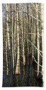Swamp Trees Bath Towel