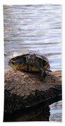 Swamp Turtle Bath Towel