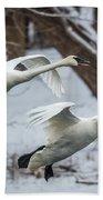 Swans Landing Bath Towel