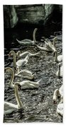 Swans On The Canal Bath Towel