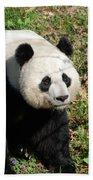 Sweet Chinese Panda Bear Sitting Down In Grass Bath Towel