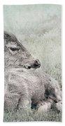 Sweet Young Deer Bath Towel