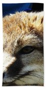 Swift Fox With Oil Painting Effect Bath Towel