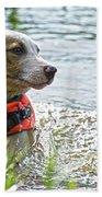 Swimming Family Dog Hand Towel