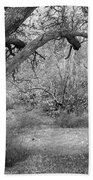 Sycamore Grove Black And White Hand Towel