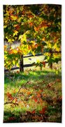 Sycamore Grove Fence 2 Hand Towel