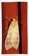 Sycamore Tussock Moth Bath Towel