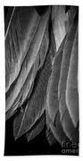 Tail Feathers Abstract Bath Towel
