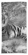 Takin It Easy Tiger Black And White Bath Towel