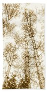 Tall Aspens Bath Towel