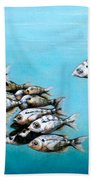 Tampa Bay Tarpon Bath Sheet