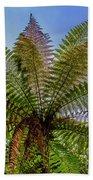 Te Puia Palm Tree Bath Towel
