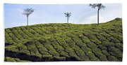 Tea Planation In Kerala - India Bath Towel