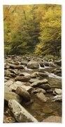 Tennessee Autumn Stream 6059 Hand Towel