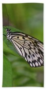 Terrific Capture Of A Paper Kite Butterfly On A Leaf Bath Towel
