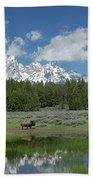 Teton Reflection With Buffalo Hand Towel