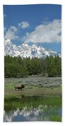 Teton Reflection With Buffalo Bath Towel