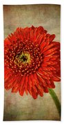 Textured Red Daisy Hand Towel