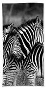 The Amazing Shot Of Zebra Bath Towel