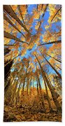The Aspens Above - Colorful Colorado - Fall Hand Towel