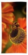 The Bee And The Helenium Bath Towel