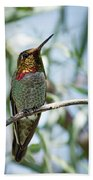 The Bird In The Foil Mask -- Anna's Hummingbird In Templeton, California Bath Towel
