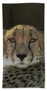 The Cheetah Bath Towel