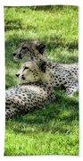 The Cheetahs Bath Towel