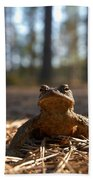 The Common Toad 3 Bath Towel