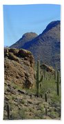 The Desert Mountains Bath Towel
