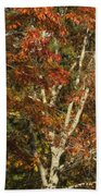 The Dying Leaves' Final Passion Bath Towel