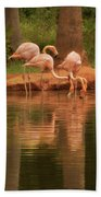 The Flock - The Serenity Of Flamingos At Water's Edge Bath Towel