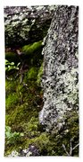 The Forest Floor Bluestone State Park West Virginia Bath Towel
